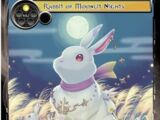 Rabbit of Moonlit Nights