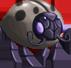 Shield Bug (Light)