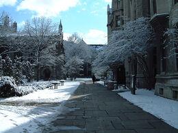 Snowy UChicago2