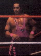 Bret Hart in 1995