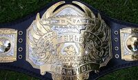 TNA World Heavyweight Championship 1