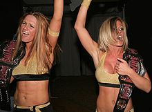 File:WWEFEMadison1.jpg
