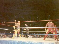Hulk Hogan And Brutus Beefcake