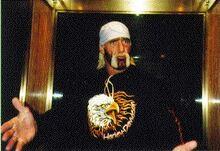 Hogan in wcw