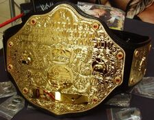 Big-gold-belt-WWE