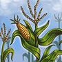 New Crops (tech)