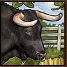 Symbolbild Forschung Viehwirtschaft
