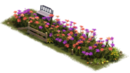 Begonia Bench