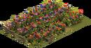 Primrose Bloom
