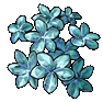 Kristallblumen-Laden - 5-Min-Produktion
