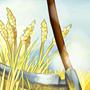 Symbolbild Forschung Landwirtschaft