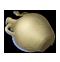 Archeology chest 2-wisdom-
