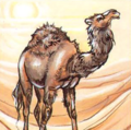 Camel AD&DTC.png