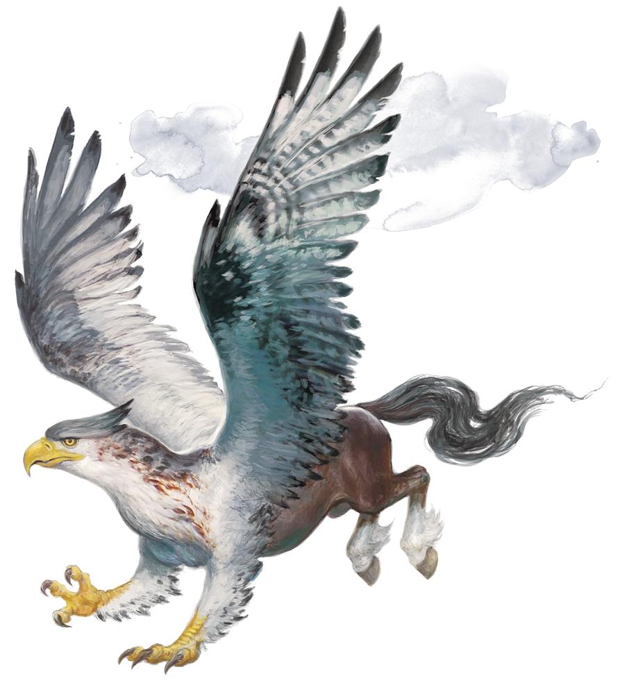 hippogriff forgotten realms wiki fandom powered by wikia