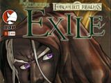 The Legend of Drizzt: Exile 1
