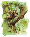 Wild-Elf-Vince-Locke.jpg