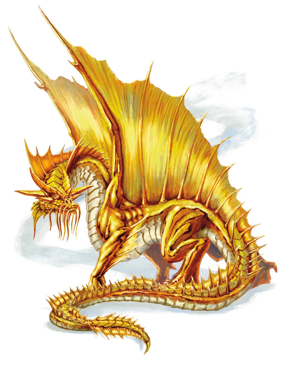 Gold dragon | Forgotten Realms Wiki | FANDOM powered by Wikia