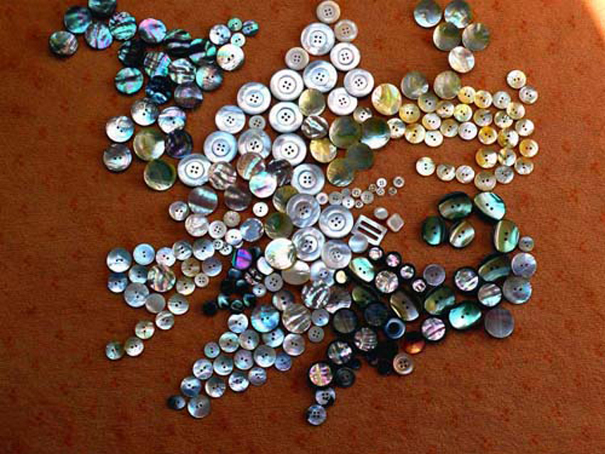 File:Mother of pearl buttons.jpg