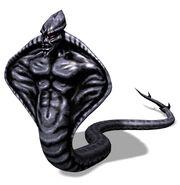 Dark dark NAGA