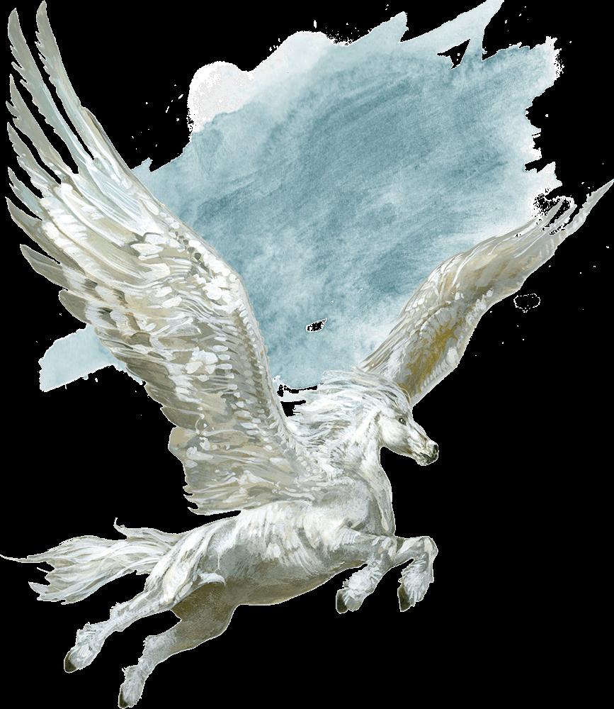 Pegasus   Forgotten Realms Wiki   FANDOM powered by Wikia