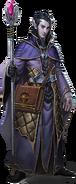 Sword Coast Legends - Companion - Soronil Noonshadow