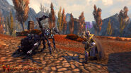Aranea in Neverwinter MMo