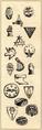 Holy symbols-2e.png