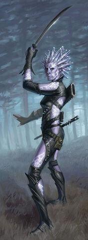 File:Swordmage.jpg