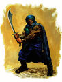 Maquar Crusader.jpg