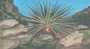 Land urchin-MC