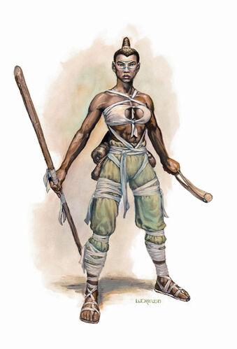 Monk | Forgotten Realms Wiki | FANDOM powered by Wikia