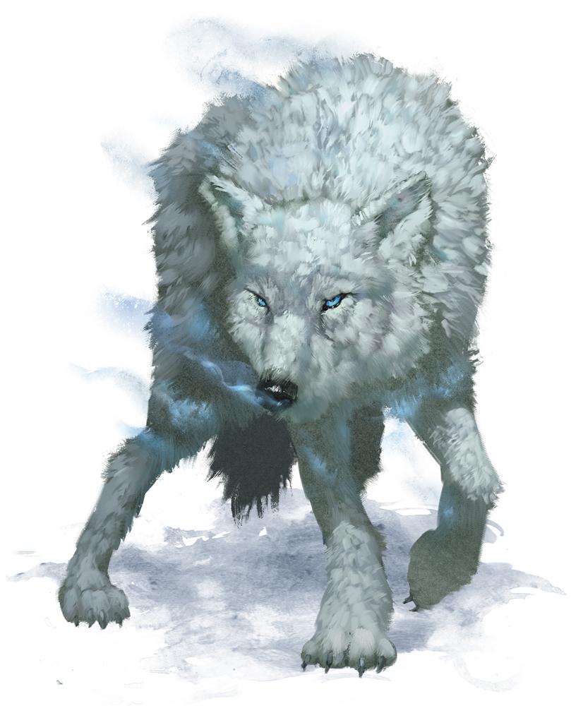 Winter Wolf Forgotten Realms Wiki Fandom Powered By Wikia