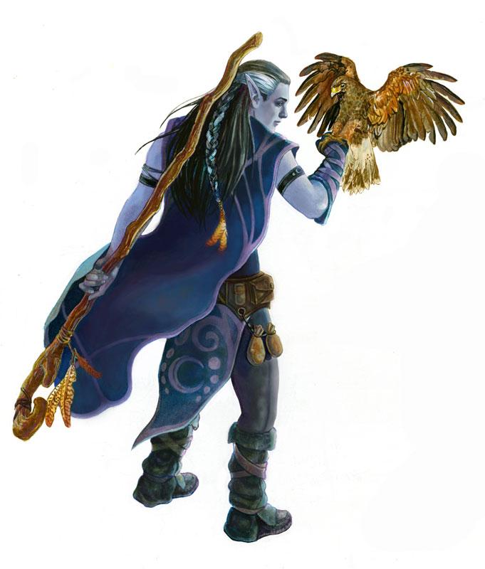 Druid Warrior Fantasy Wilderness Art