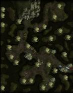 Swamp cave map exterior
