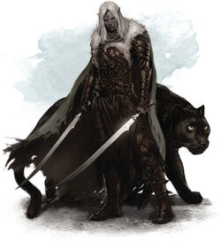 Drizzt and guenhwyvar-5e