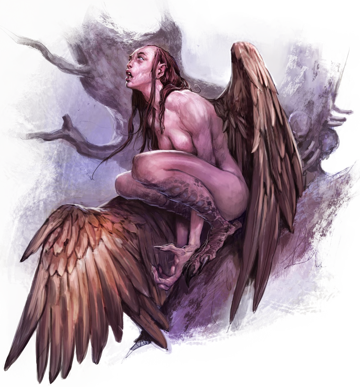 Harpy | Forgotten Realms Wiki | FANDOM powered by Wikia