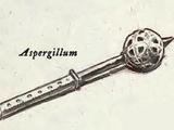 Aspergillum