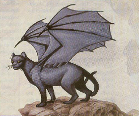 Greater winged cat