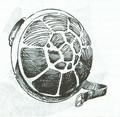 TortoiseShield.PNG
