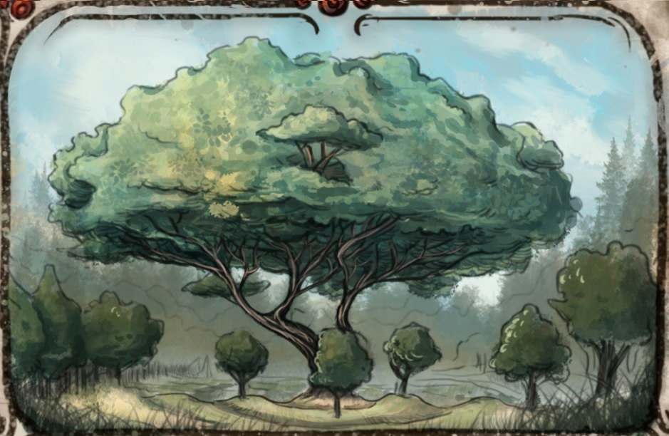 Grandfather Tree | Forgotten Realms Wiki | FANDOM powered by Wikia