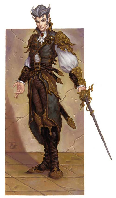 dnd 5e how to play a swashbuckler