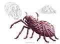 Giant spider-5e.jpg