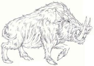 Dire Boar Forgotten Realms Wiki Fandom Powered By Wikia