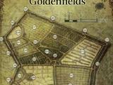 Goldenfields
