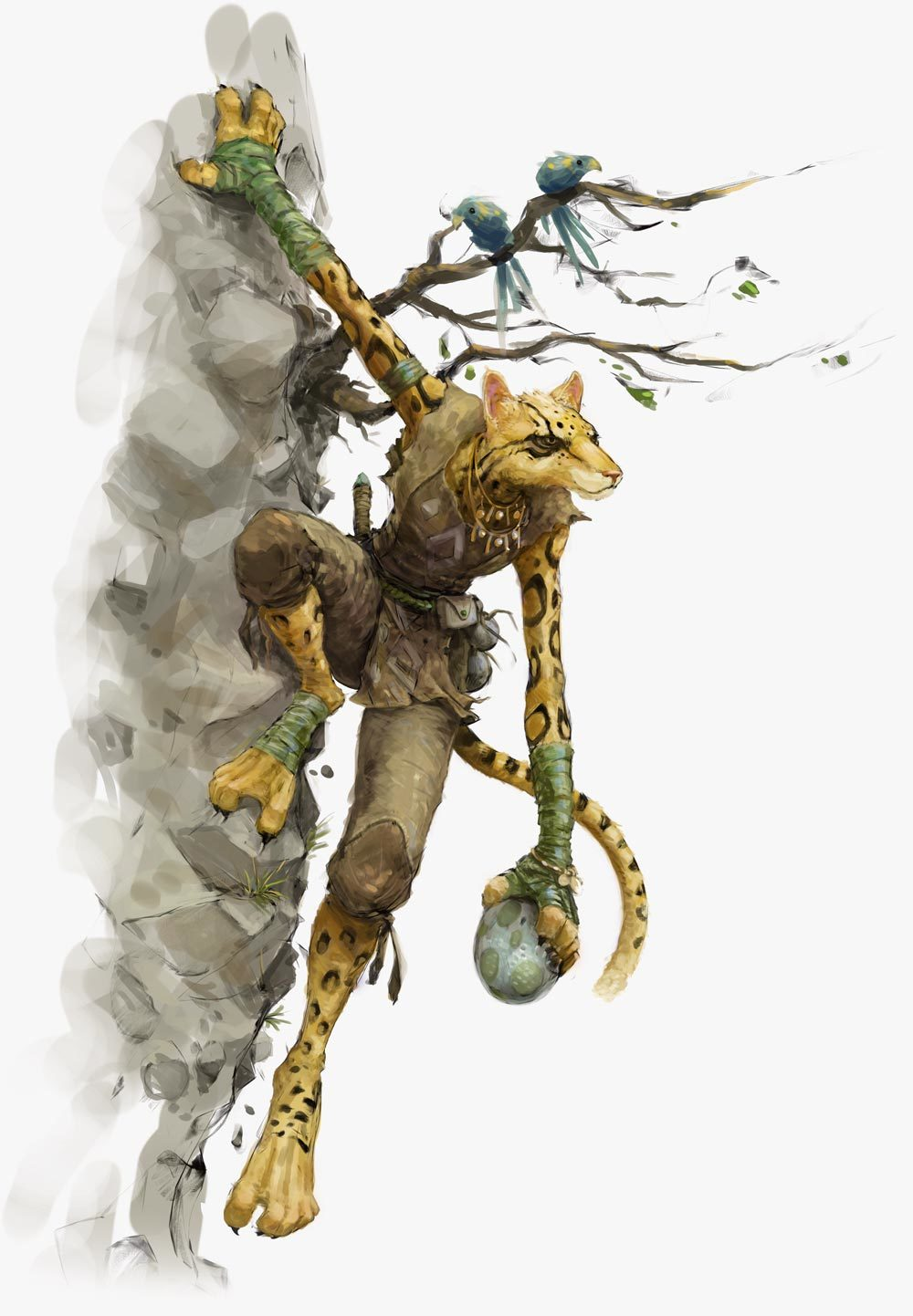 Tabaxi | Forgotten Realms Wiki | FANDOM powered by Wikia