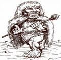 Arctic-dwarf-2e.png