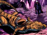 Riding lizard