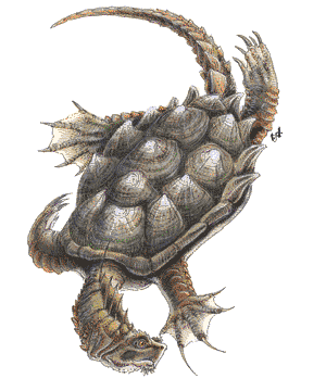 Dragon Turtle Forgotten Realms Wiki Fandom Powered By Wikia