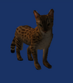 Neverwinter Nights 2 - Creatures - Cat.png