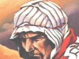 Nabil al-Karim